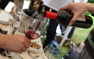 WineFest-main